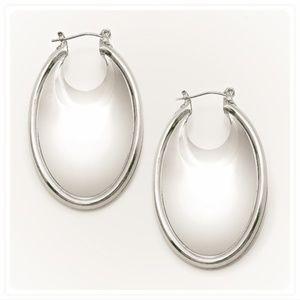 Metal Pin Catch Earrings